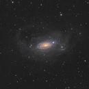 M63 w halo,                                pete_xl