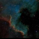 NGC 7000 - The North America Nebula in Cygnus : SHO-RGB,                                Daniel.P