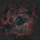 Rosette Nebula - October 14, 2015,                                Chappel Astro