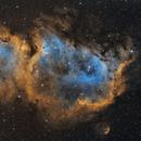 Soul Nebula in SHO,                                Ryan Fraser