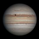 Jupiter | 2019-08-20 3:41 | RGB,                                Chappel Astro