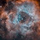 Rosette nebula HOO,                                Antonio Ghelardi