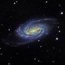 NGC2903,                                Kenneth Adler
