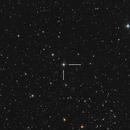 N Cas 2021 Nova Star,                                Serge