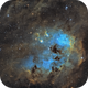 IC410 - The Tadpoles,                                Emil Andronic