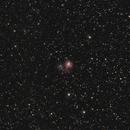 NGC1931,                                Mario Gromke