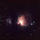 M42 - The Great Orion Nebula - Wide Angle,                                Timothy Martin & Nic Patridge
