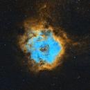 NGC2237 - Rosette Nebula,                                Rodrigo Quiroga