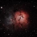 Trifid nebula,                                Timothy O'Connor
