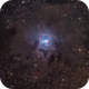 Iris Nebula NGC 7023 in Cepheus,                                Arnaud Peel