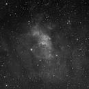 ngc 7635 - Bubble Nebula,                                S. DAVID