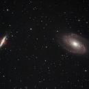 Galaxies M81 and M82,                                Steven Bellavia