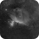 IC0434 2016 H-alpha widefield,                                antares47110815