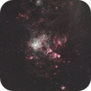 Tarantula Nebula and surrounds,                                Gerard O'Born