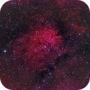 NGC 6823,                                Michael Wolter