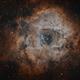 Rosette Nebula in Bi-Colour Ha & OIII - Mono DSLR,                                Chris