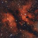 IC1318,                                Andrea Storani