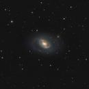 M96,                                Andrei Ioda