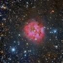 IC5146 - Cocoon Up Close,                                Paddy Gilliland