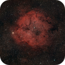 IC1396 au Canon 300 mm F4,                                Jean-Pierre Bertrand