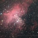 Messier M16 Eagle Nebula,                                David Newbury