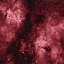 IC1318 - Butterfly Nebula,                                David N Kidd