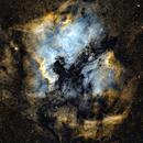 North American and Pelican Nebulae,                                Glenn C Newell