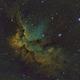 The Wizard Nebula (NGC 7380) in SHO,                                Josh Woodward