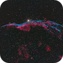 Western Veil Nebula NGC 6960,                                Göran Nilsson