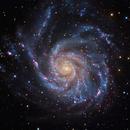 M101,                                Giovanni Paglioli