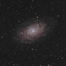Triangulum Galaxy,                                Tony Cook