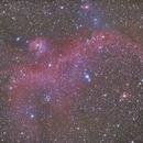 IC2177 Seagull Nebula ,                                Hata Sung