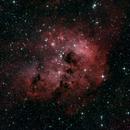 IC410 - First Light,                                Matthias Steiner