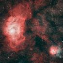 M8 and M20, The Lagoon and Trifid Nebulae in Sagittarius,                                Stuart Markus