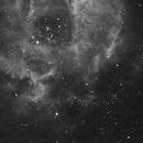 Rosette Nebula (partial),                                Dave Fram