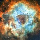 Rosette Nebula,                                John Thompson