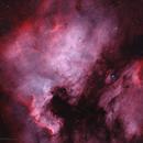 NGC7000 - HOO,                                Wilson Lee