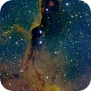 IC1396 - Elephant's Trunk Nebula,                                Johan Bakker