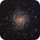IC 342 The Hidden Galaxy,                                Bogdan Jarzyna