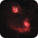 IC405 & IC410 | The Flaming Star and Tadpole Nebulas,                                Tom Hitchen