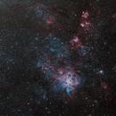 Tarantula Nebula Area-30 Doradus/NGC 2070,                                Tom Peter AKA Astrovetteman