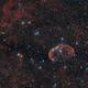 The Crescent Nebula - NGC 6888,                                Crash-dk