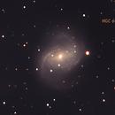 NGC 6951,                                David Newbury