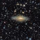 NGC 7331,                                Paolo Demaria