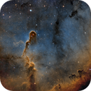 IC 1396 - Elephant's Trunk SHO,                                Alan Pham