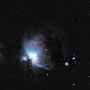 M42,                                proteus5