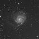 M101 widefield (Drizzled),                                Alan Hancox