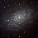 M33,                                David Goldstein