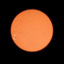 Sun H-Alpha, November 25, 2020,                                Ennio Rainaldi