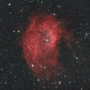 SH2-261 Lower's Nebula,                                Salvo Lauricella